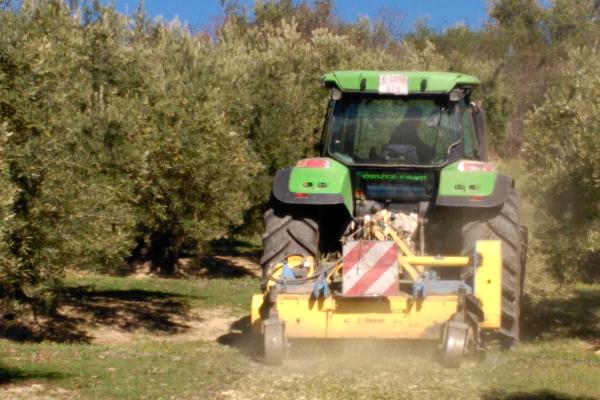 Línea 4. Equipo integral de agrupado, picado y gestión de los restos de poda para olivar intensivo y tradicional